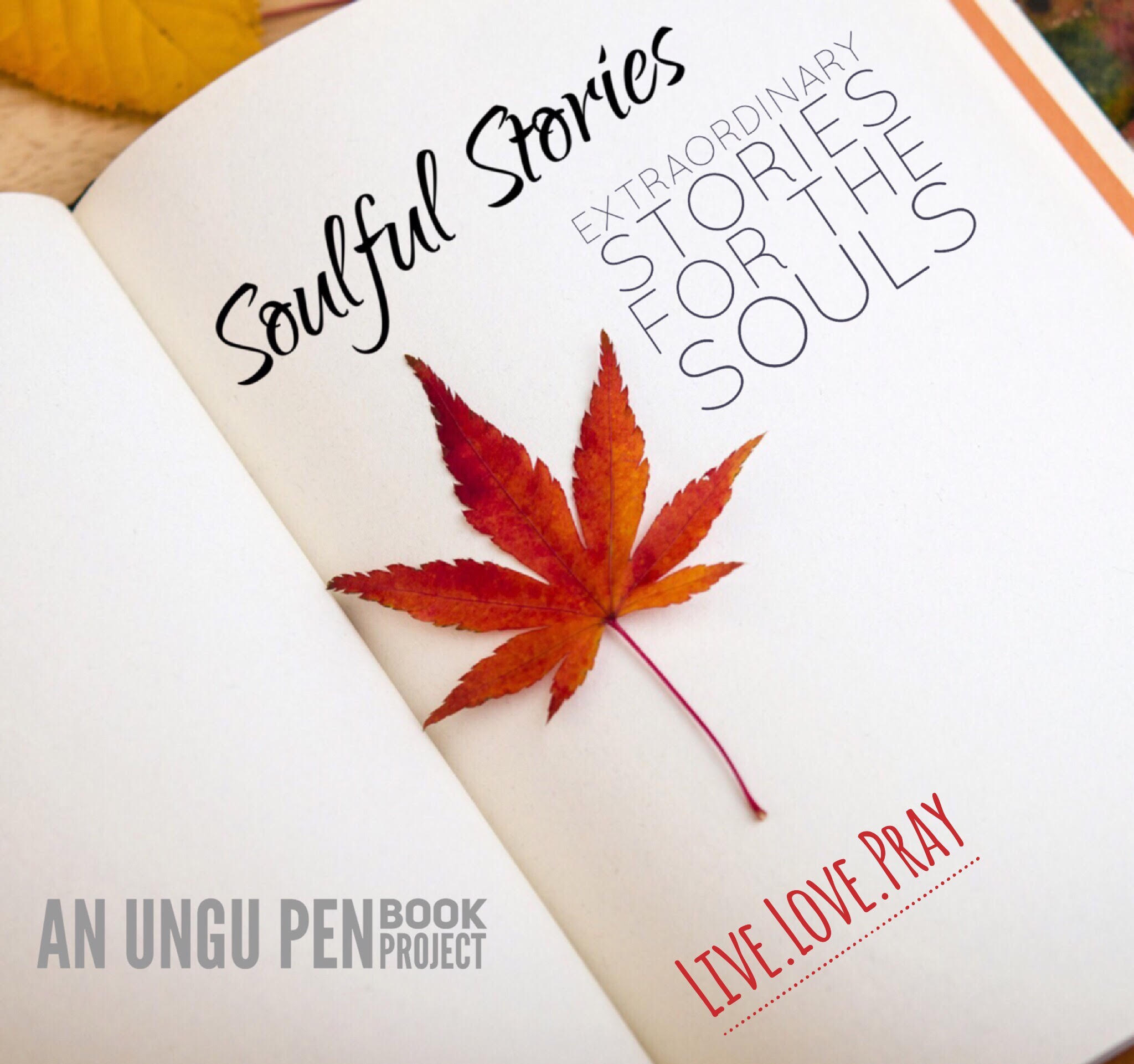 Soulful Stories – A compilation of extraordinary stories for the soul